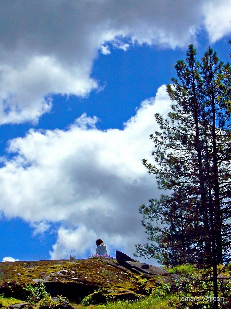 On The Mountaintop by Tamara Valjean