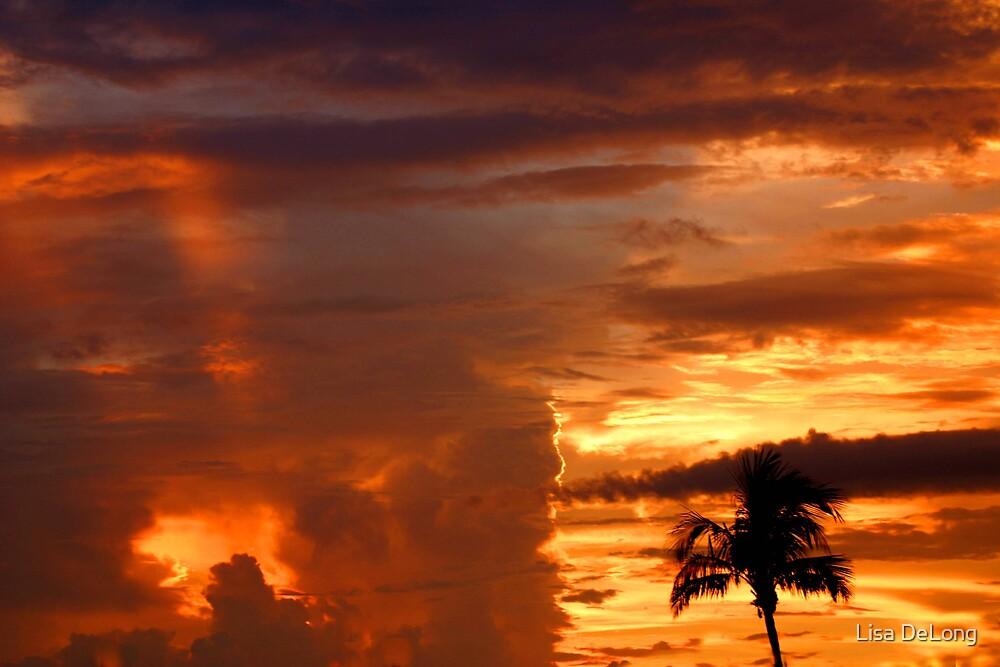 Sunset by Lisa DeLong