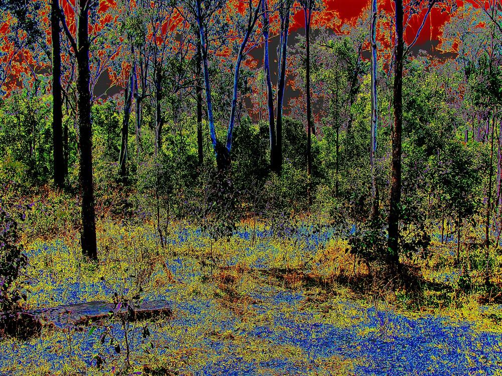Earth_Wind_Fire_Water by Glenn Browning