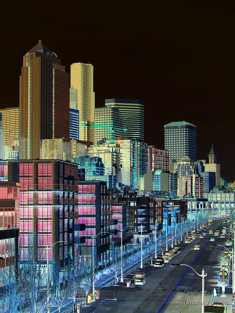 Seattle Alaskan Way Negative by Tamara Valjean