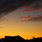 Rooftops at Sunset by relayer51
