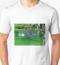 Peacock By the Lake T-Shirt