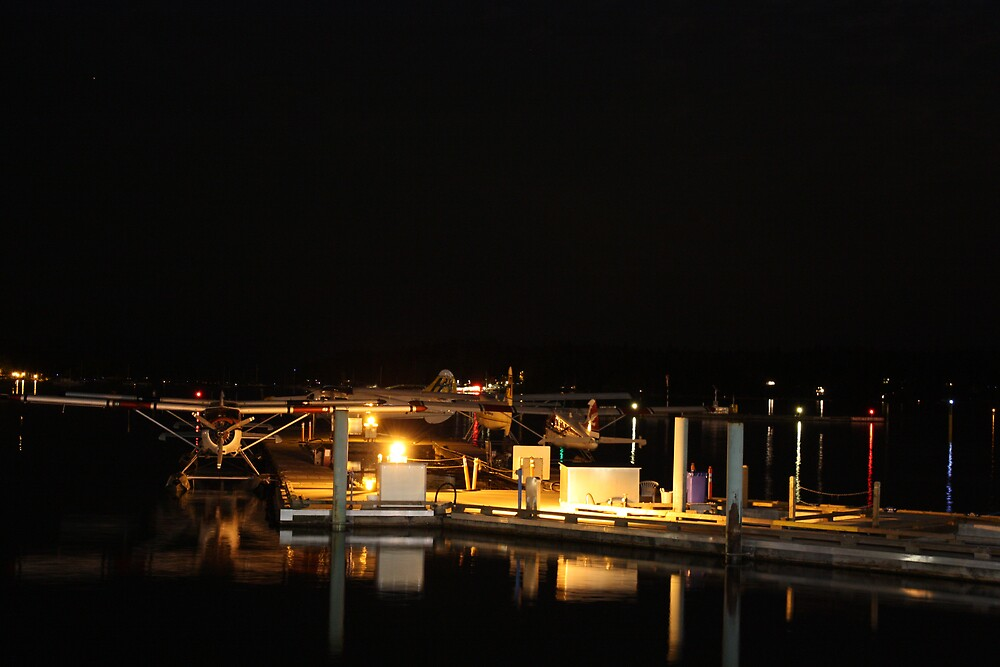 Seaplanes at night by MurrayB
