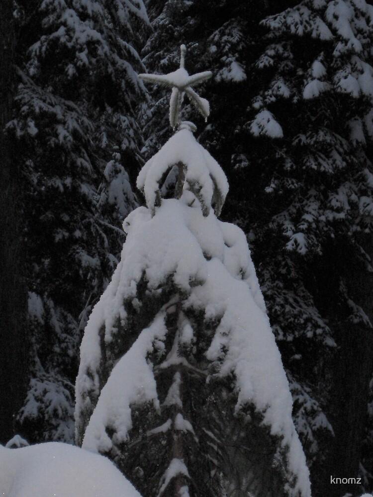 Natural Xmas Tree by knomz