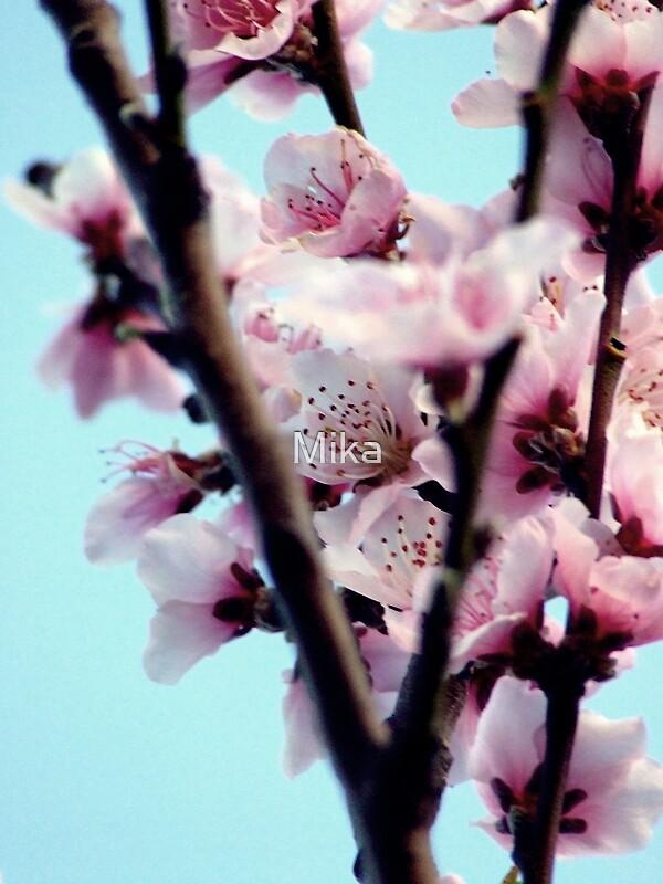 Peachy by Mika