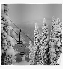 Snowy Trees & Ski Chairs Poster