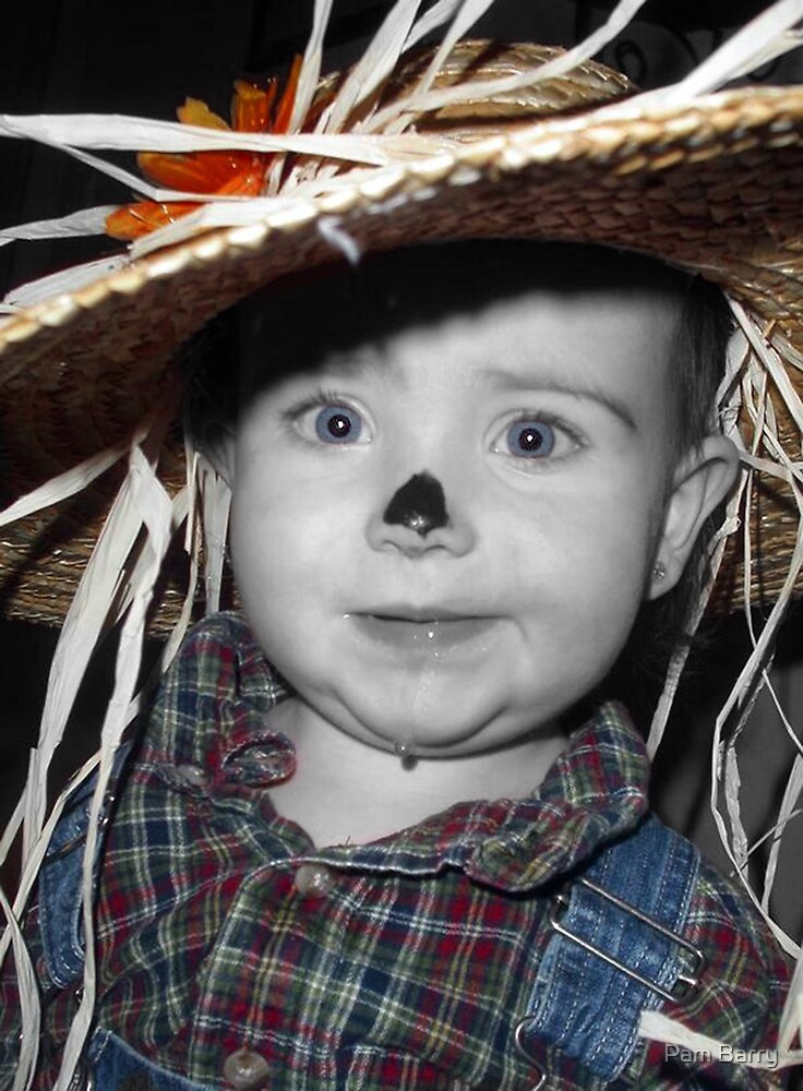 Little Scarecrow by Pam Barry