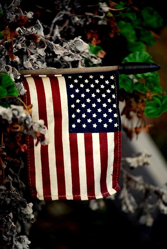 American  by kdhawkins