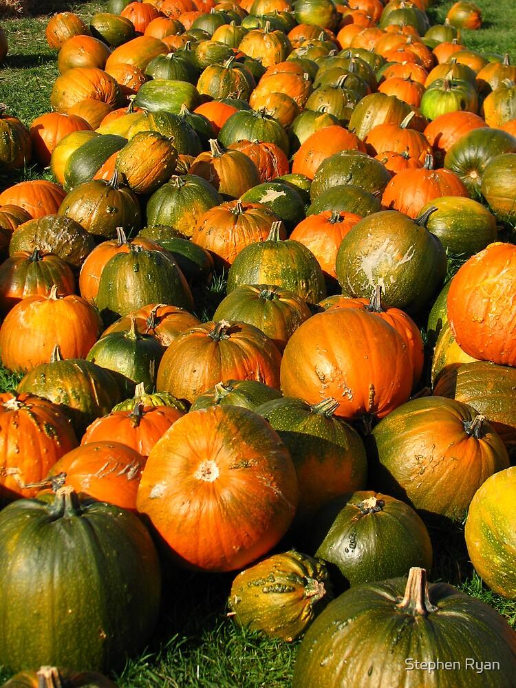 PumpkinFever by Stephen Ryan