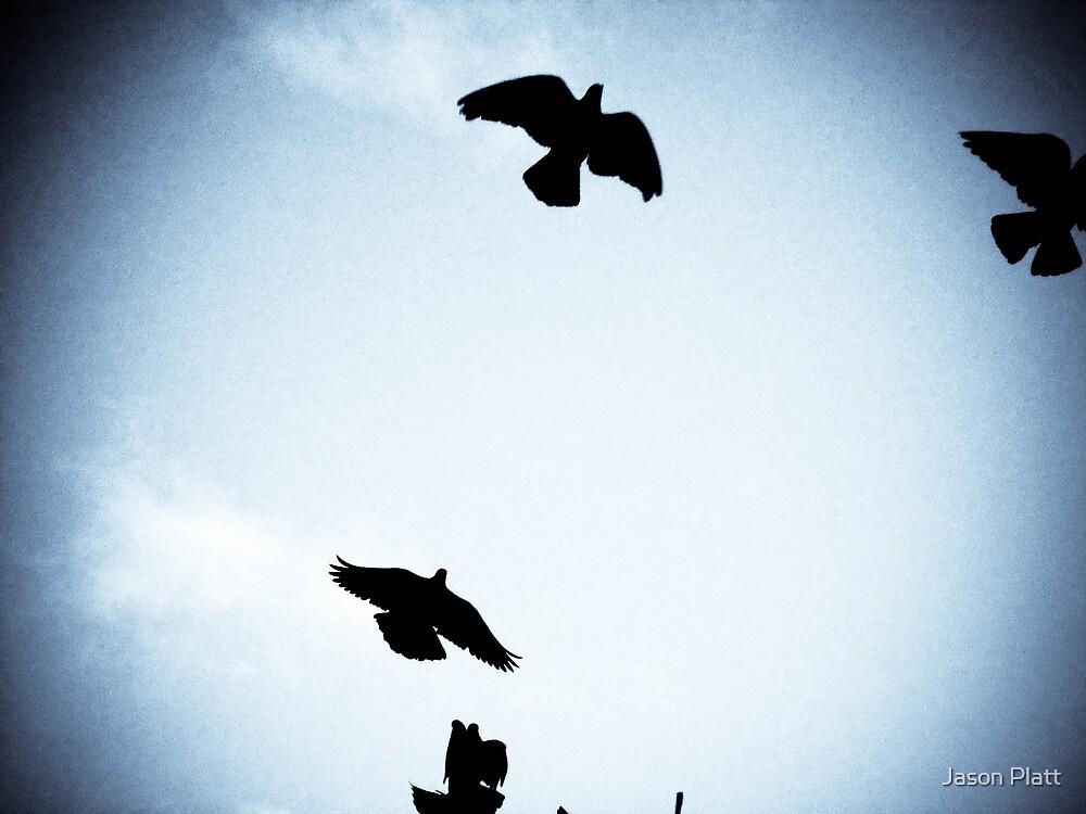 fight or flight by Jason Platt