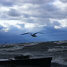 Fighting Against the Wind by Tamara Bobst