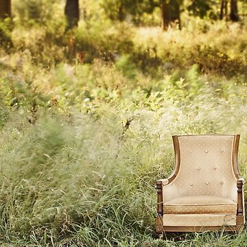Enchanting Chair by AprilKoehler