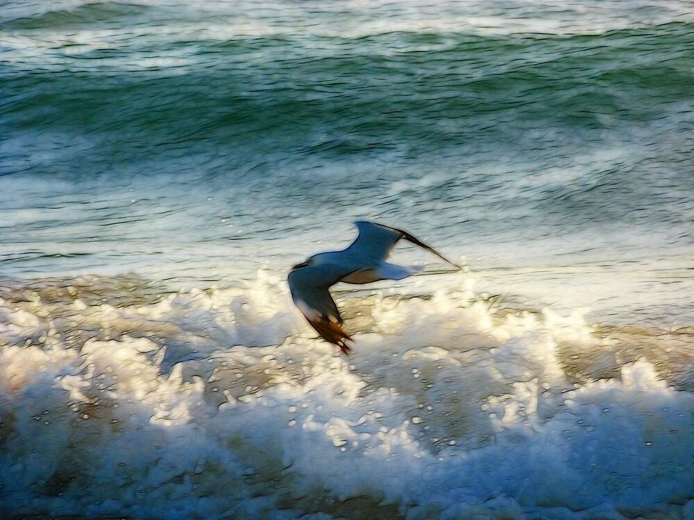 Wave skimming by SarahTrangmar