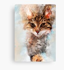 Cat Saba art Canvas Print