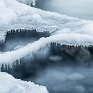 Hovering Ice by April Koehler