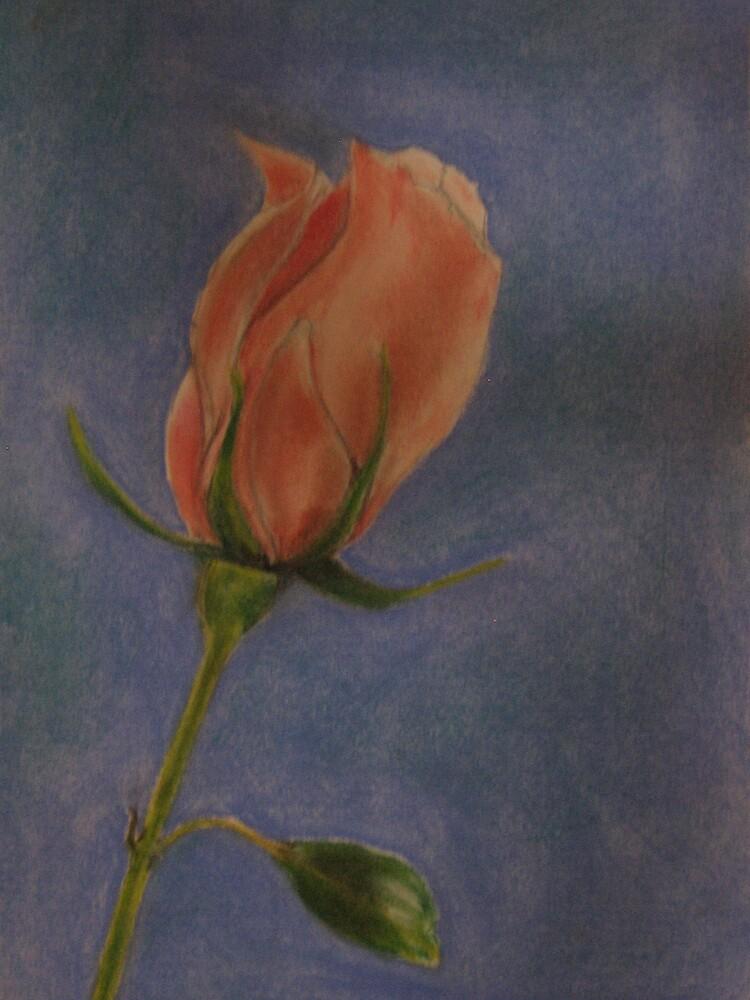 Pink rosebud by ValM