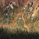 Red Mountain Details by April Koehler