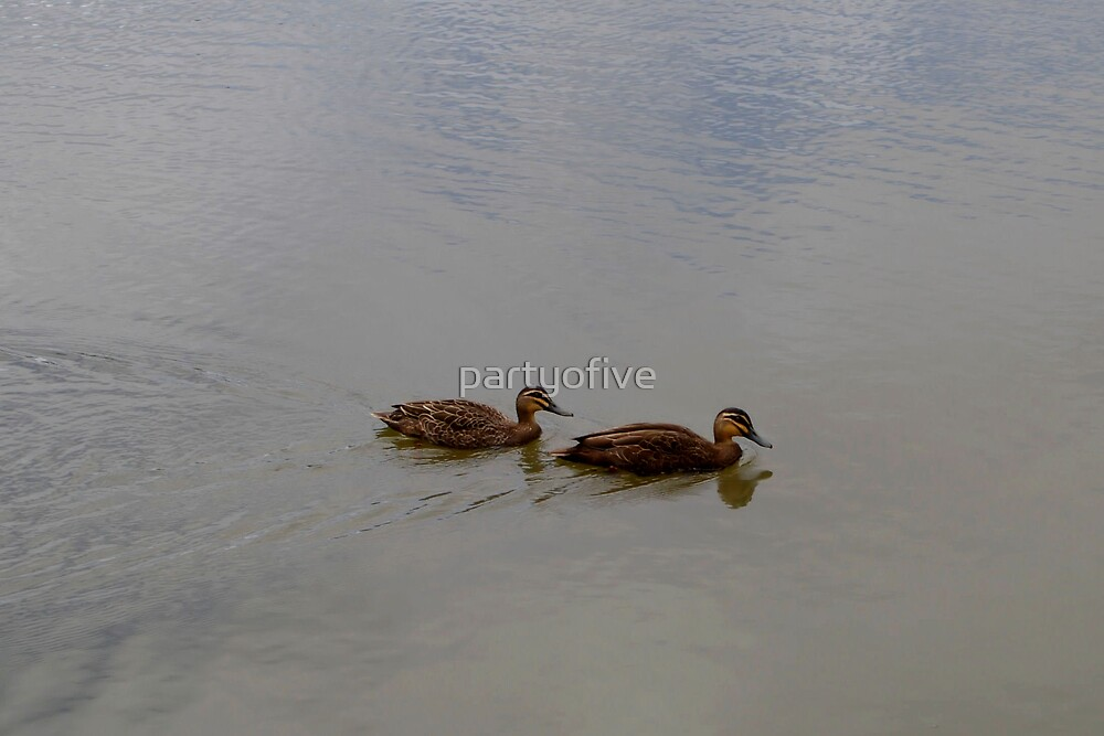 quack, quack... by partyofive