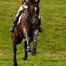 Spot the jump by Ann Heffron