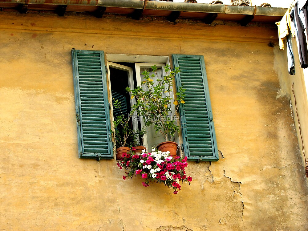 Tuscan window by hans p olsen
