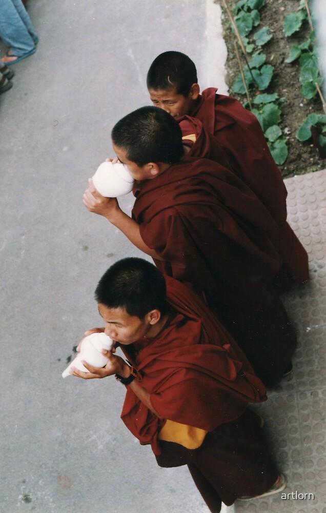 awaiting Lama by artlorn