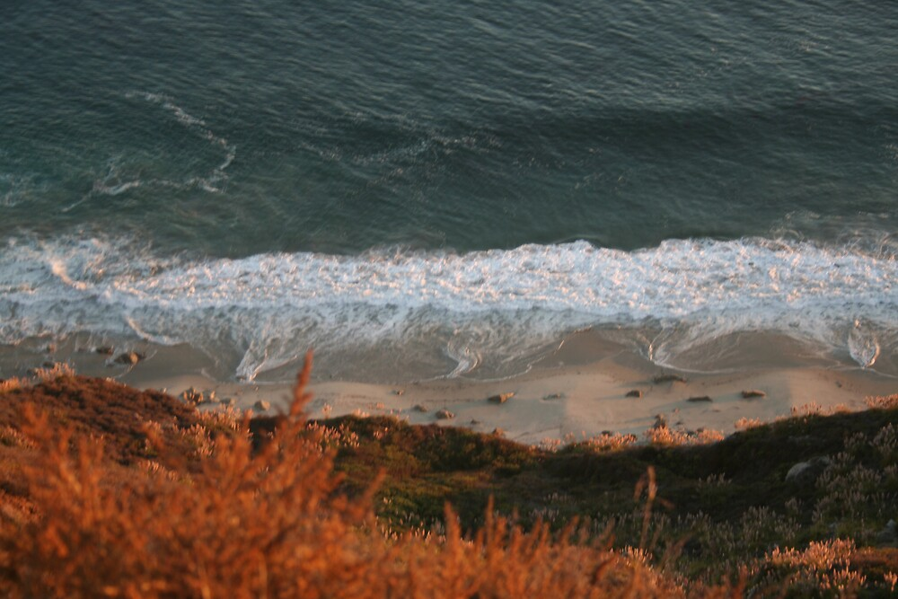 The Pacific from Highway 1 CA - 2 by Ilan Cohen