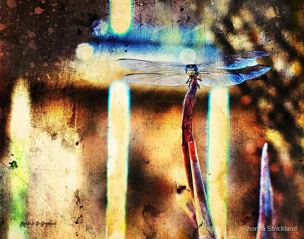 A Single Wish (Art & Poetry) by Rhonda Strickland