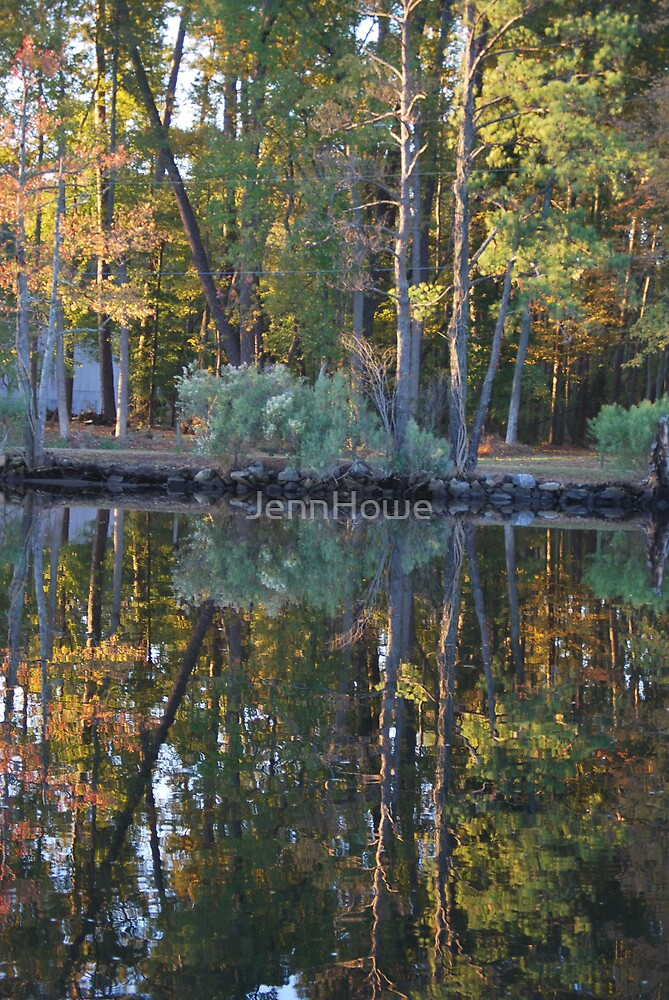 Reflection by JennHowe