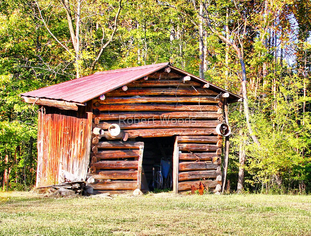 Old Shed by Robert Woods