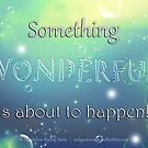 Something Wonderful by Stephanie Rachel Seely