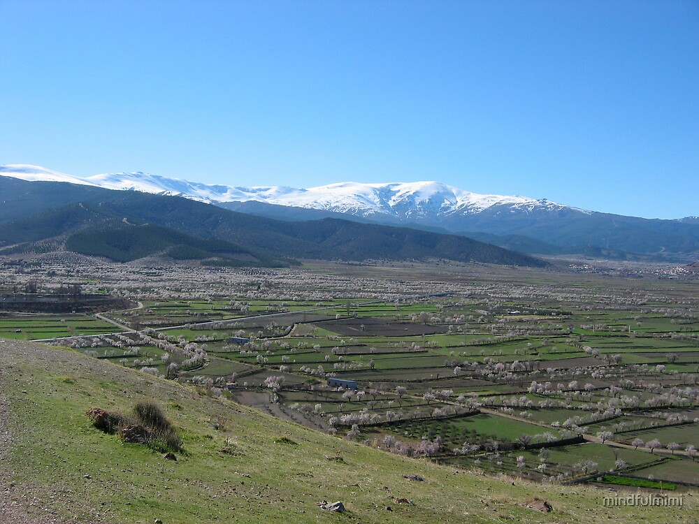Spring and winter in one picture (close to Granada -Spain) by mindfulmimi