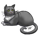 Gray Cat by Jennifer Stolzer