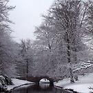 Bridge in Winter by Trevor Kersley