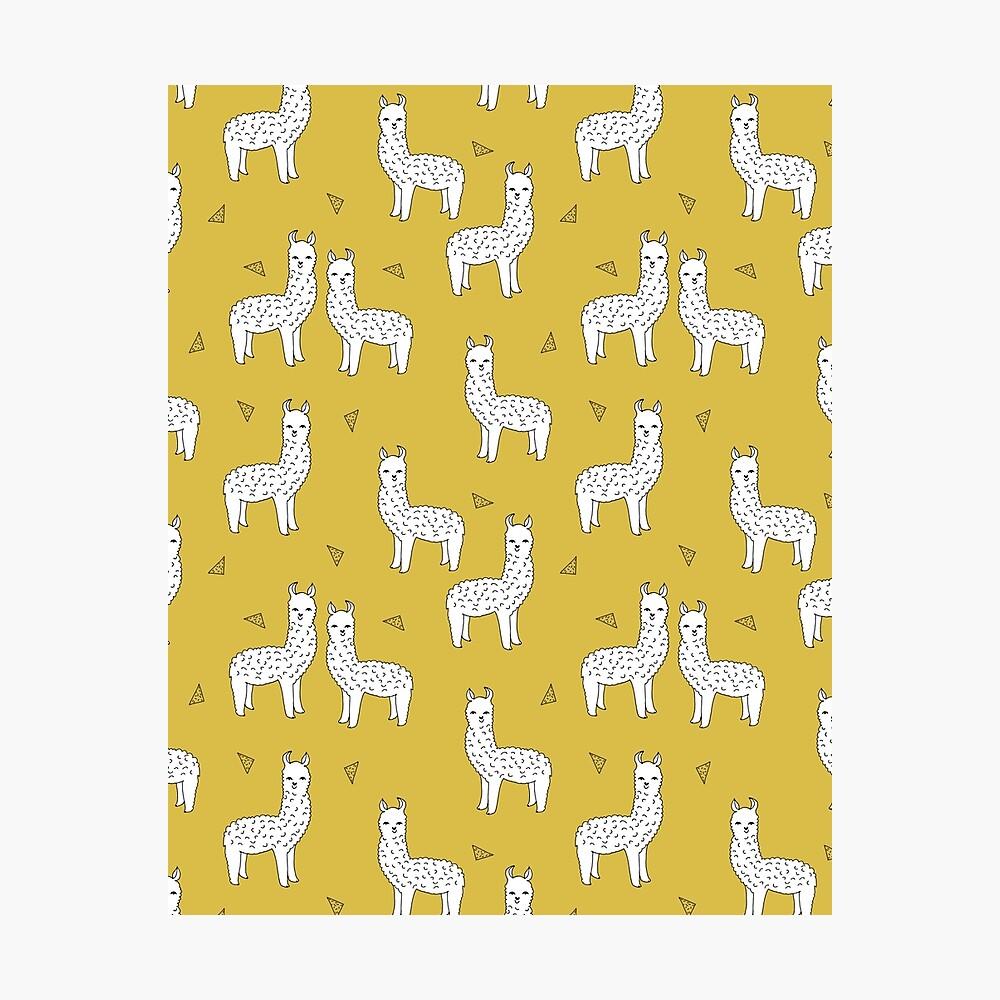 Alpaca - Mustard by Andrea Lauren Photographic Print