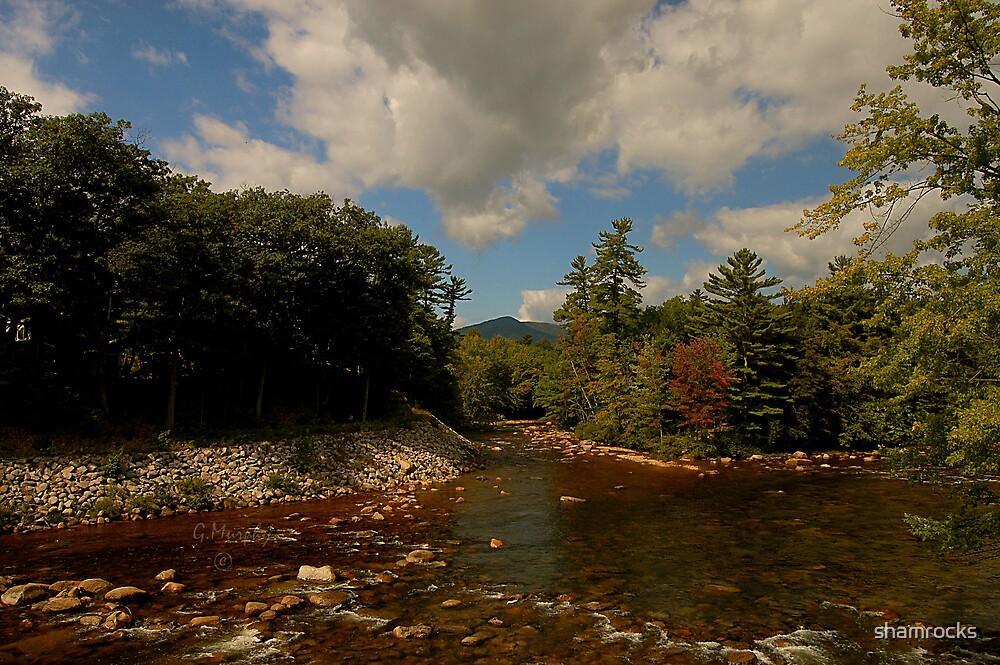 """ Saco River "" by shamrocks"