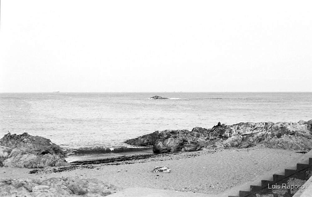 Praia dos Ingleses by Luis Raposo