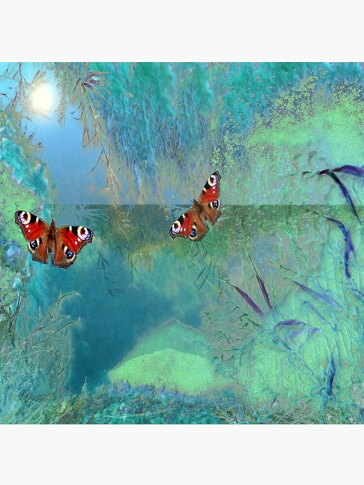 The Pond  by valzart