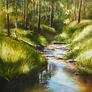 Mullum Mullum Creek on a sunny Sunday morning by Dai Wynn
