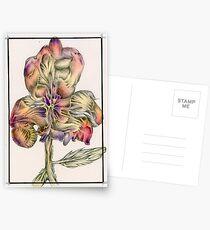 Pansy Postcards