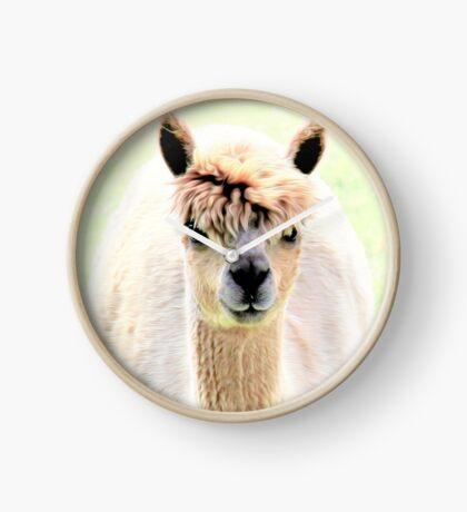 Sweet alpaca Clock