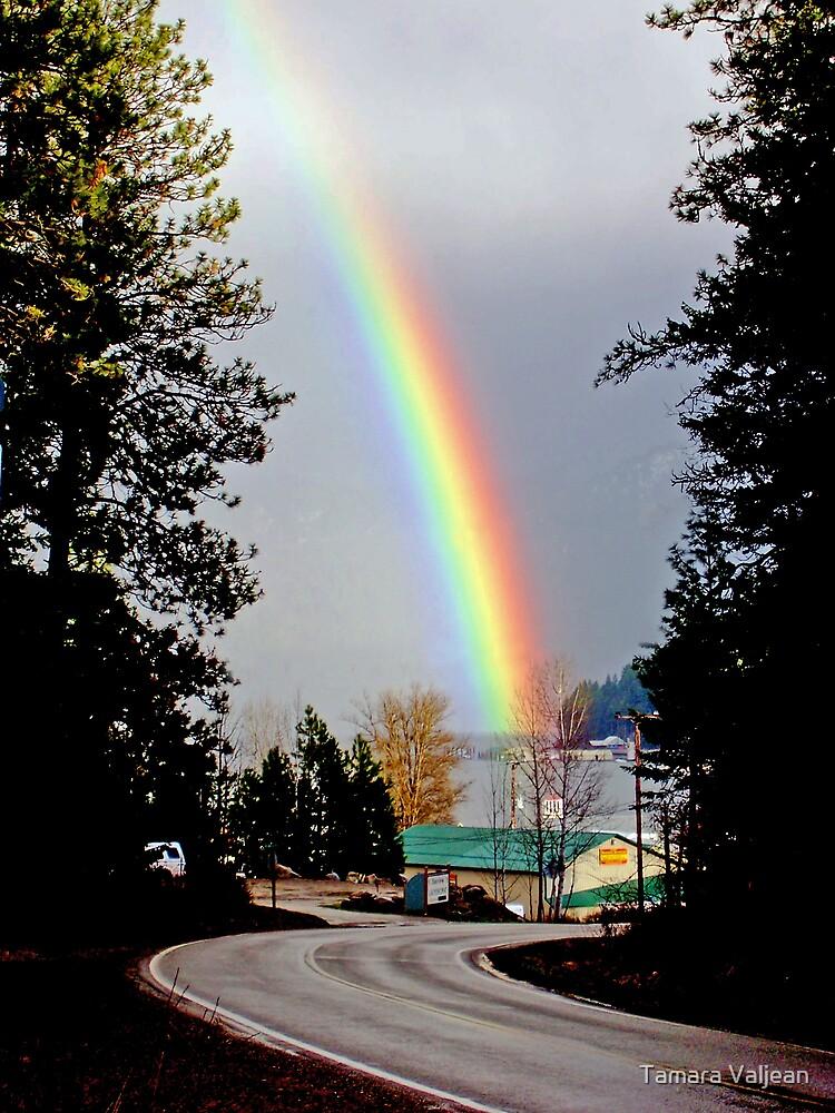 Rainbow Road by Tamara Valjean
