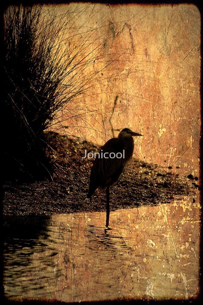 Bayou Watch by Jonicool