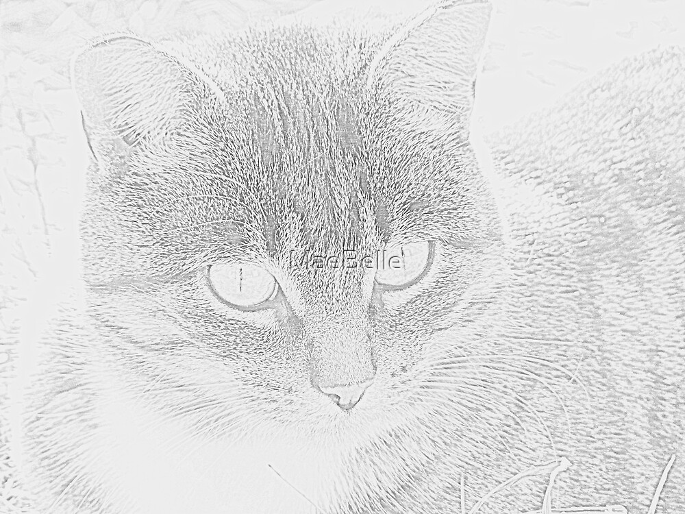 Digital Pencil Sketch of Skooter by MaeBelle