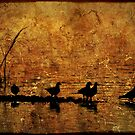 Bayou Friends by Jonicool