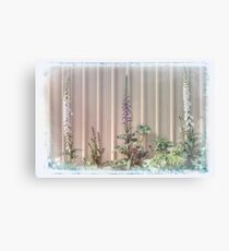Three Foxgloves Canvas Print