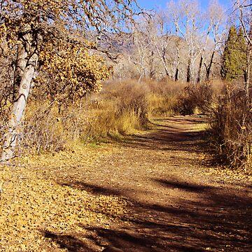 An Autumn Stroll by Beverlytazangel