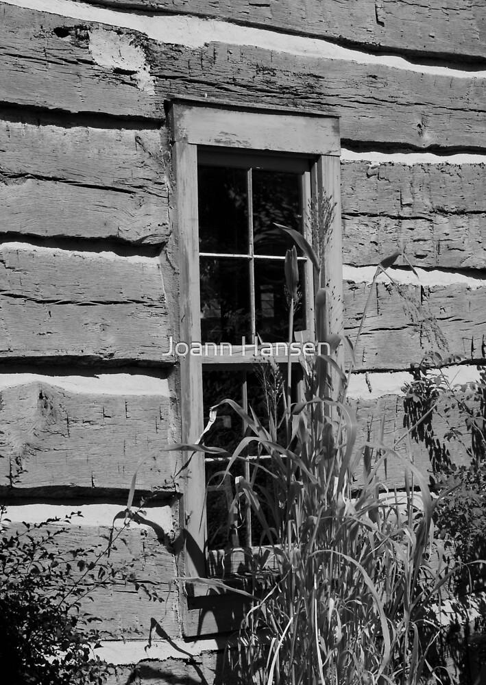 Log Cabin Window by Joann Hansen