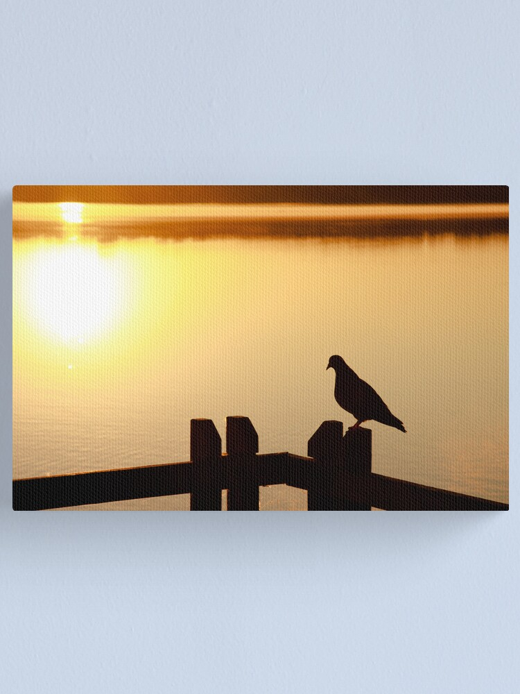 Alternate view of Pigeon sitting on the jetty Canvas Print