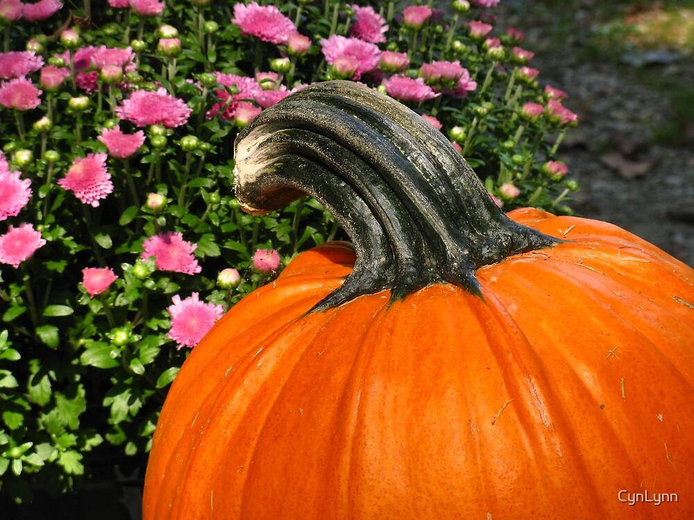 Happy Halloween!! by CynLynn