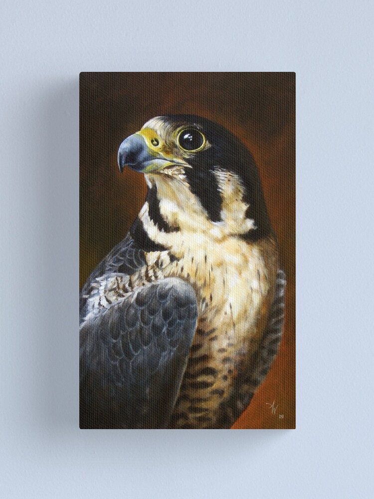 Alternate view of Proud - Peregrine Falcon Canvas Print